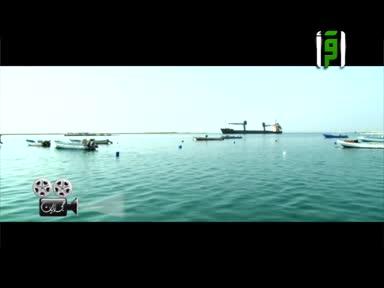 حجازبات - ح 7- مدينة ينبع - تقديم وائل رفيق