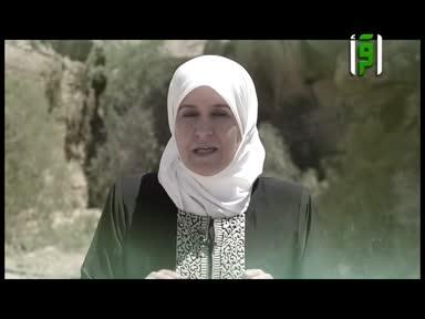 والذاكرات - خنساء بنت خدام - رفيدة حبش