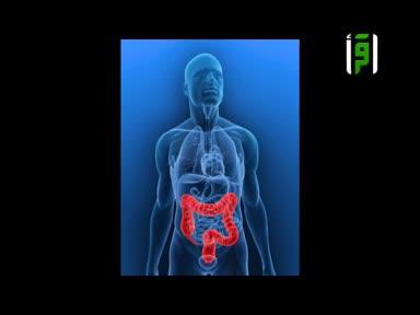 الطب والحياة -ح67-القلق(3-14)-الدكتور زهير السباعي