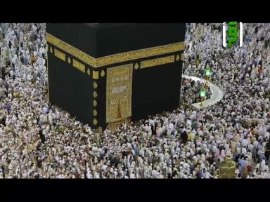 من أرض السعودية - ح 10 - جائزة الملك سلمان لحفظ القرآن