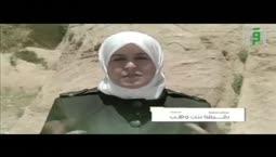 والذاكرات -   رقيقة بنت وهب   -    الدكتورة رفيدة حبش