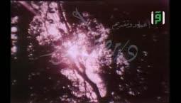 العلم والايمان  - الحياة والموت -  الدكتور مصطفى محمود