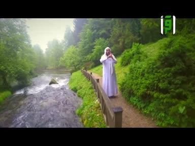 ثمرات العقول -باب الله سبحانه وتعالى