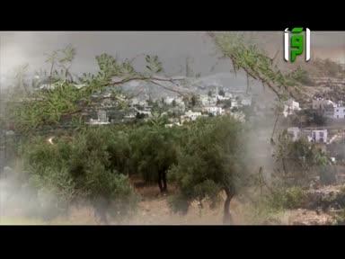 فلسطين ارض وحكاية - عنبتة
