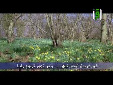 أشعار عبد الرحمن العشماوي -وصف الطبيعة