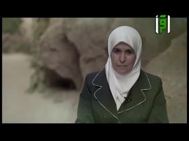 والذاكرات -ام سليم بنت  ملحان