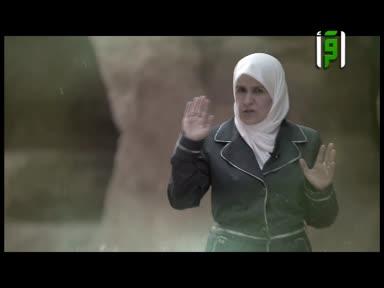 والذاكرات - ام حرام بنت ملحان