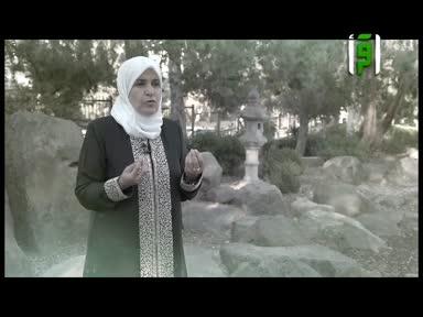 والذاكرات - ام كلثوم بنت علي بن ابي طالب