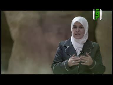 والذاكرات - زينب بنت معاوية