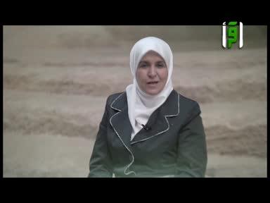 والذاكرات - ام سنان الاسلمية