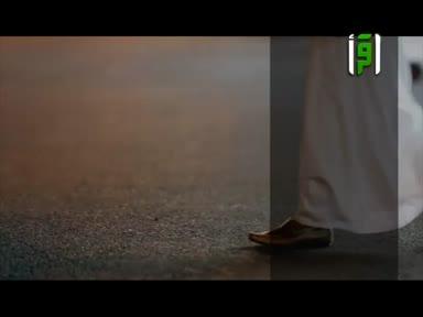 من ارض السعوديه - ح 23- تراثنا حبنا