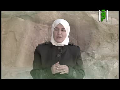 والذاكرات -امنة بنت وهب - رفيدة حبش