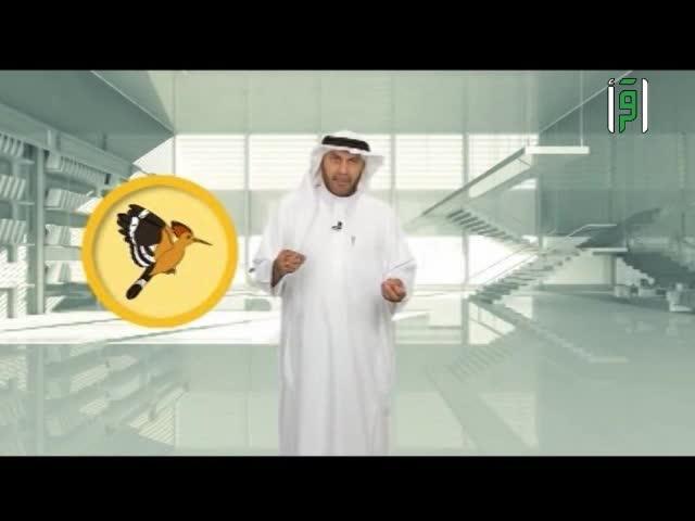 كن إيجابياً كالهدهد - الدكتور سليمان العلي