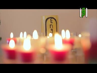 تقارير بلاد الكنانة  - شمع طارد للذباب