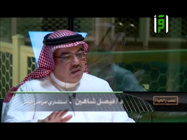 الطب و الحياة - ح 27- التبرع بالكلى ج2 - الدكتور زهير السباعي