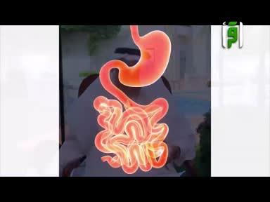 الطب والحياة -ح84-المرارة 1-3- الدكتور زهير السباعي