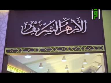 تقاير بلاد الكنانة - افتتاح معرض الكتاب الدولي في القاهرة -تقرير دينا عامر
