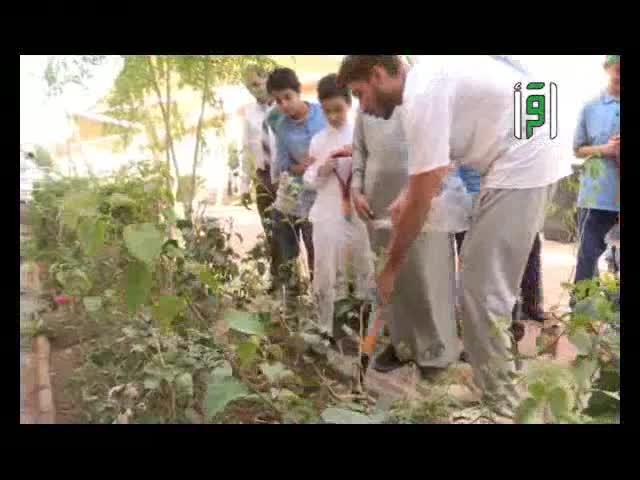 تقارير من أرض السعودية - بيئتي الخضراء