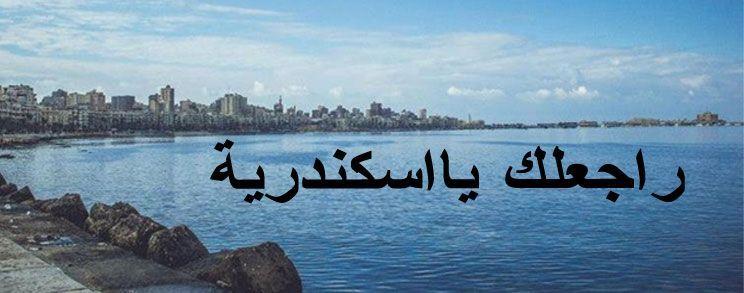 مسلسل راجعلك يا اسكندرية