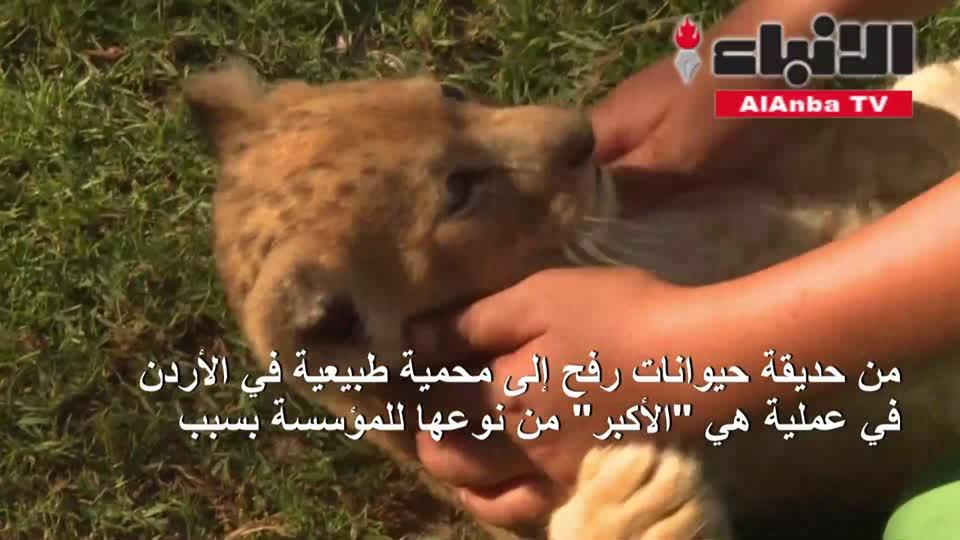 فتح حديقة للحيوانات في غزة بعد أشهر من إغلاقها