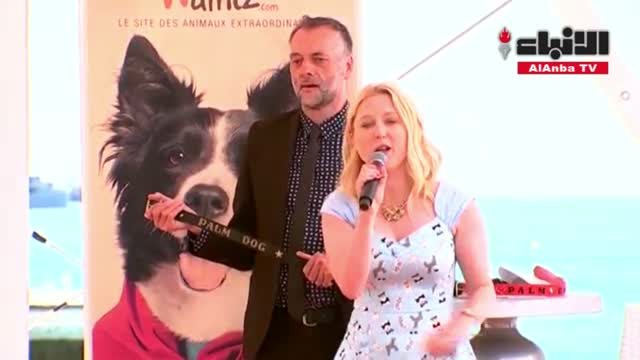 كلب شيواوا شجاع يفوز بجائزة سعفة الكلب بمهرجان كان